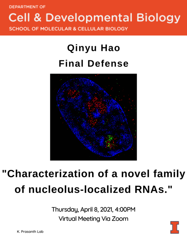 Qinyu Hao Final Defense Flyer